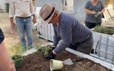 Tutorial: GSAC Wicking Garden Beds Workshop